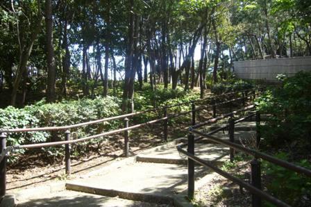 tsujido5-041.JPG